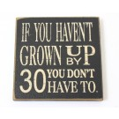 AGE '30' MAGNET